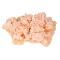Roze haliet