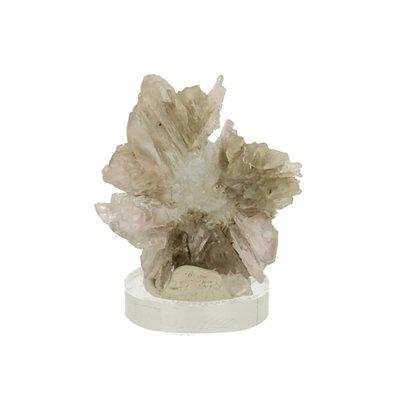 Aragoniet bloem uit Spanje