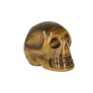 Tijgeroog ( goud ) ca 3. cm schedel
