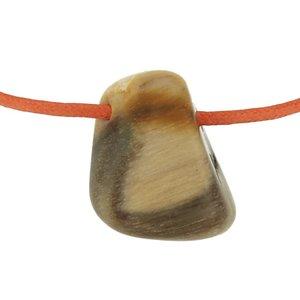 Versteend hout opaal